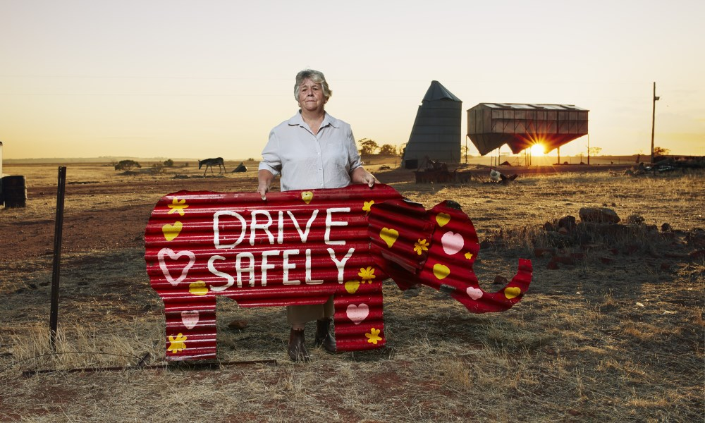 Karen standing with elephant painted with road safety message